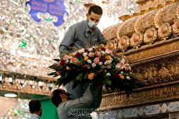 Imam Ali (AS) Mausoleum Decorated with Flowers